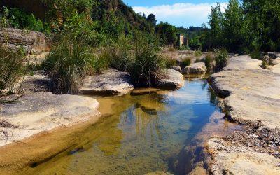 Valle del Jerte – 12 de Junio de 2021
